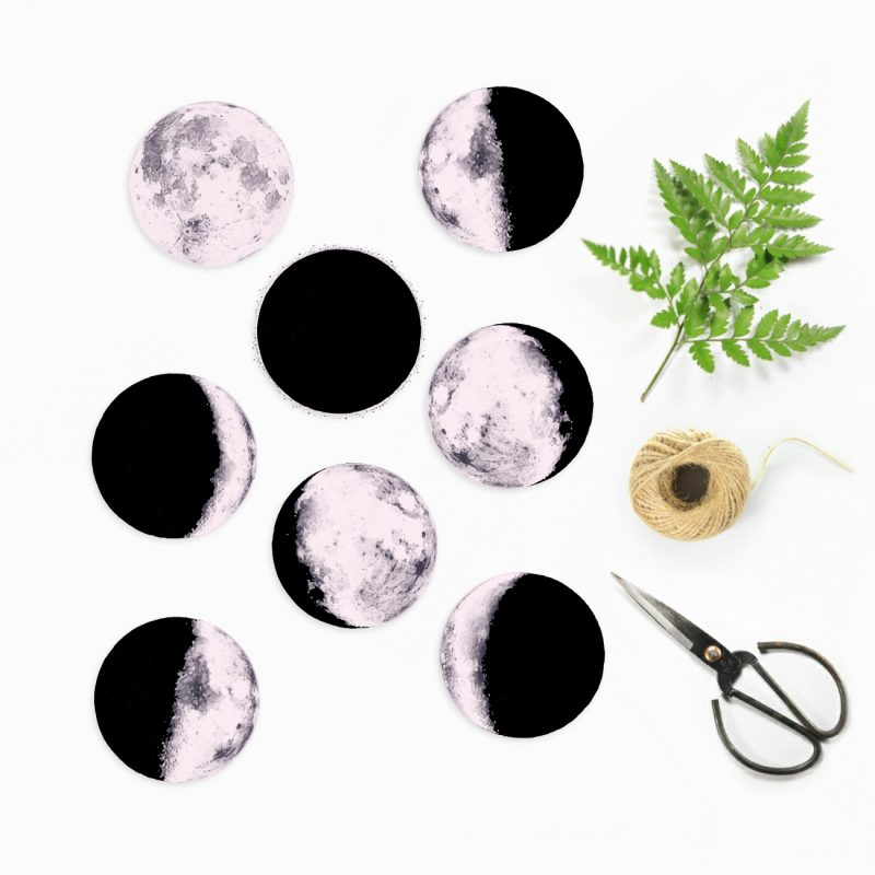 moon phase activity